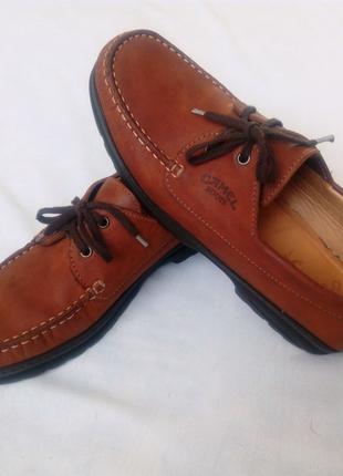 Туфлі Camel взуття