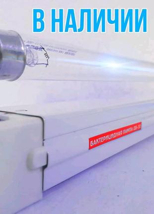 Бактерицидные лампы безозоновая, кварцевая лампа 50м2