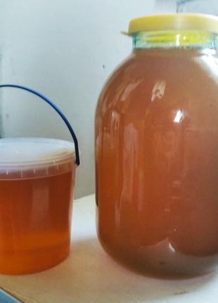 Мёд натуральный (своя пасека)