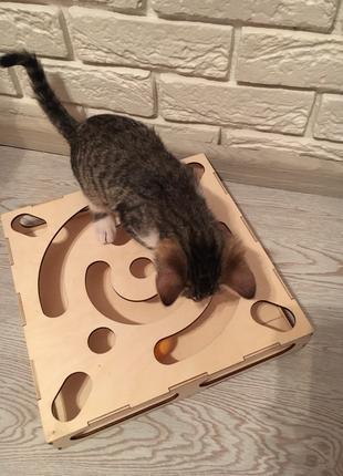 Замечательная игрушка для котенка