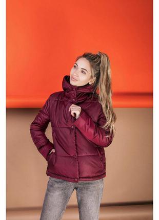 Куртка женская осень весна 242