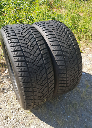 225 55 17 Dunlop