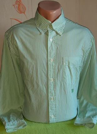 Модная белая рубашка в салатовую полоску tommy hilfiger made i...
