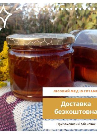 Лісовий мед із сотами 2019