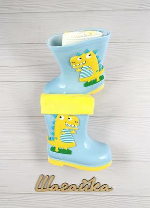 Резиновые сапоги детские на мальчика