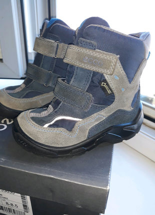 Сапоги ботинки ecco