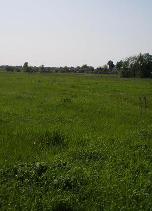 Земельный участок 12 соток в с. Волошиновка