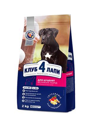 Club 4 Paws премиум для щенков крупных пород вкус курица 14 кг.