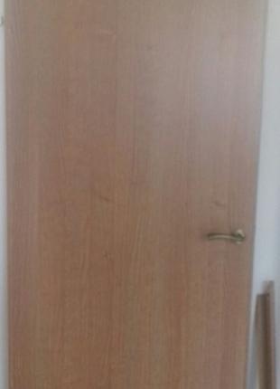 Новые межкомнатные двери