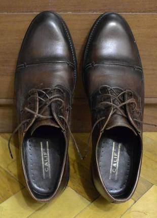 Туфли оксфорды-броги мужские calif