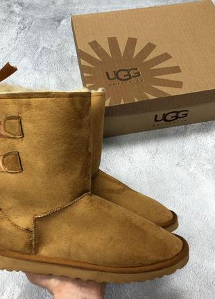 Женские зимние угги/сапоги/ботинки ugg  brown коричневого цвет...