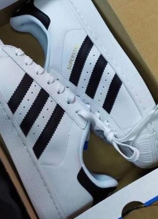 Кроссовки  adidas superstar white/black кожа