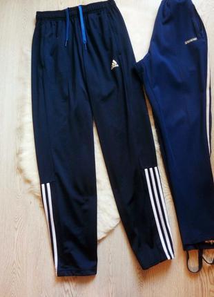 Синие спортивные мужские штаны с полосками лампасами сбоку бат...