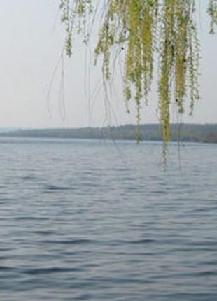 Участок 8 сот, Васильковский район, Киевская область