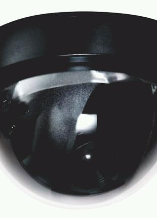 Камера муляж, камера обмана, камера для помещения