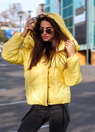 Куртка лимонад