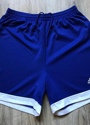 Мужские спортивные шорты adidas l
