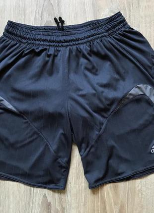 Мужские спортивные шорты adidas m