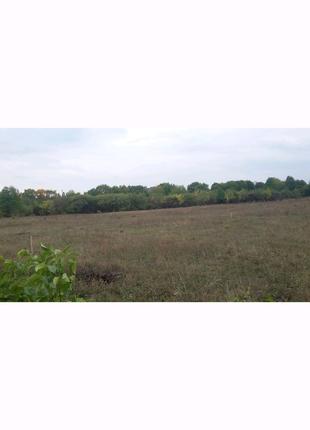 Продається земельна ділянка с. Довжок м. Кам'янець-Подільський