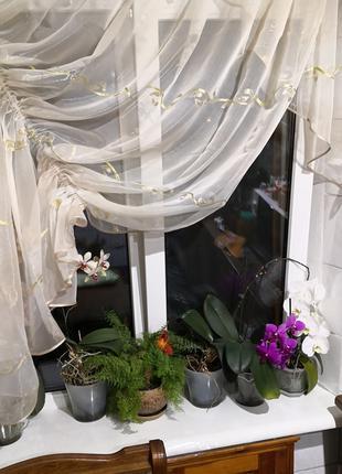 Занавеска штора тюль на кухню уголок волна