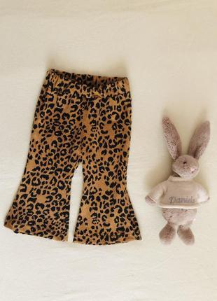 Леопардовые штаны,штанишки.