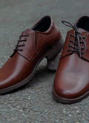 Мужские польские туфли кожаные коричневые на шнурках