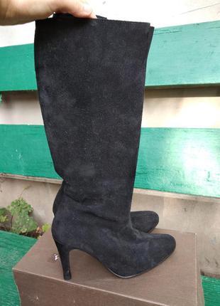 Сапоги женские демисезонные на каблуке замшевые