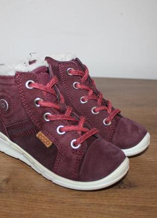 Зимние ботинки ecco gore-tex soft, 24 размер