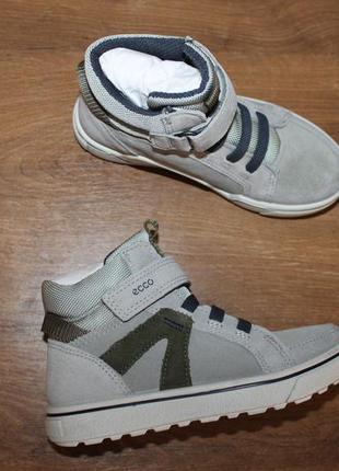 Замшевые ботинки ecco glyder 736142