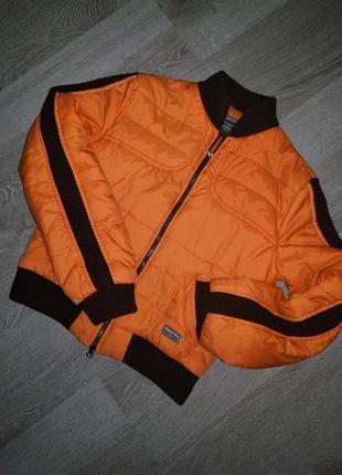 Стильная польская куртка бомбер prima vera с чёрными лампасами...