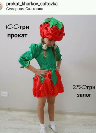Костюм помидора помидорки