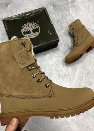 💖распродажа💖женские зимние \демисезонные ботинки \ сапоги timb...