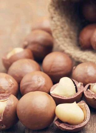 Макадамия орех в скорлупе купить в Виннице, Макадамія Вінниця