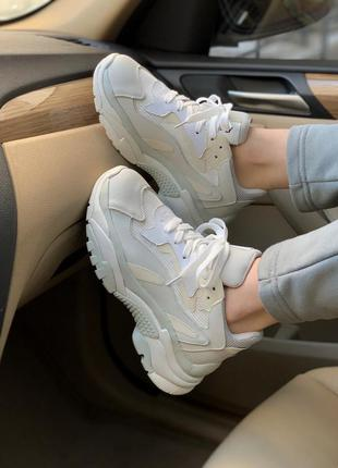 Кросівки ash grey кроссовки