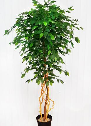 Дерево штучне Фікус. Дерево искусственное Фикус