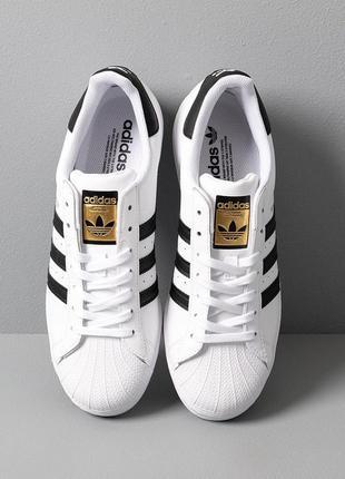 Кроссовки adidas superstar (бело/черные)