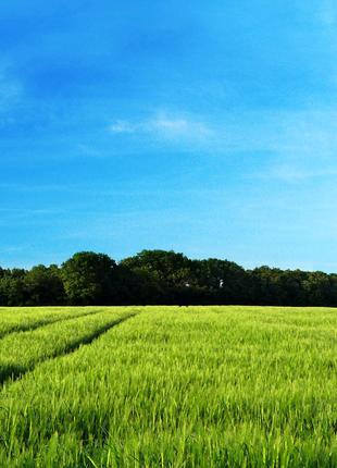 Продам право на получение земли по УБД