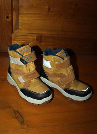 Зимняя обувка на меху  primigi