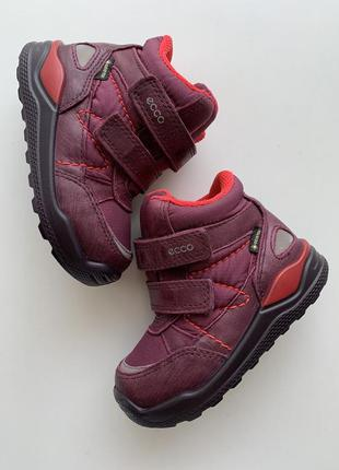 Зимние ❄️🍂 ботинки ecco с мембраной gore-tex🍂 ❄️размер 22 (13....