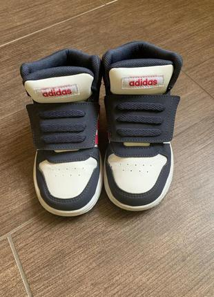 кроссовки хайтопы adidas