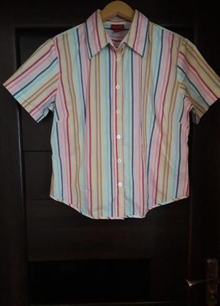 Рубашка с коротким рукавом, кофта, блуза.