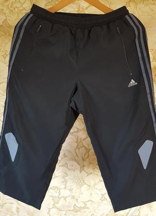 Функциональные спортивные шорты adidas clima cool