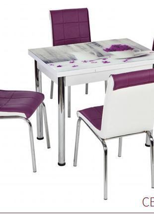 Комплект мебели стол и стулья производства Турции