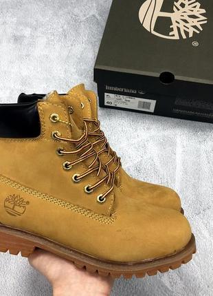 Мужские демисезонные кожаные ботинки timberland brown. тимберл...