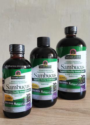 Natures Answer, Sambucus, сироп черной бузины, 12 000 мг