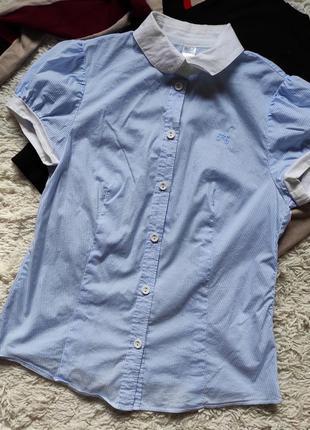 Блуза голубая в полоску, хлопок