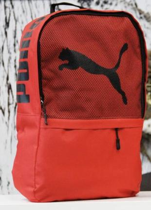 Новый рюкзак с ортопедической спинкой.