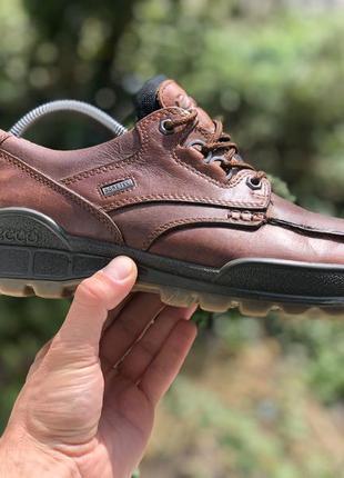 Ecco track gore-tex шкіряні демісезонні туфлі оригінал
