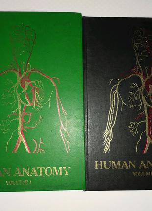 Анатомия человека  на англ.языке Human anatomy