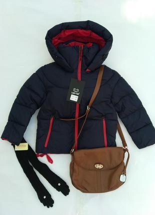 Женская стильная куртка евро зима с перчатками митенками в под...